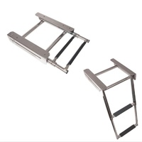 Telescopic Stainless Steel Retractable Ladder